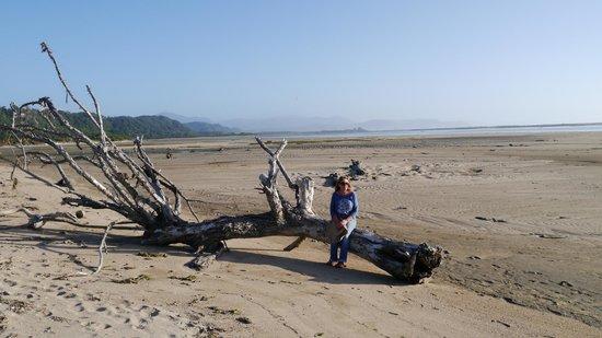 Karamea Holiday Park: Estuary towards the south coast