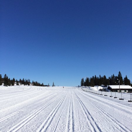 Rustad Hotell & Fjellstue: The world's best XC skiing!