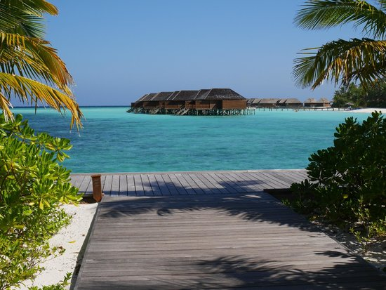 Veligandu Island Resort & Spa: Our view when we first arrived on the island.