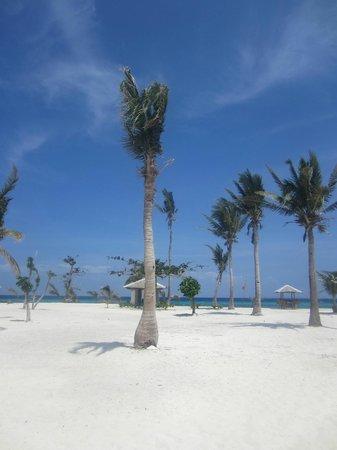 Ocean Vida Beach & Dive Resort : Kalanggaman Island