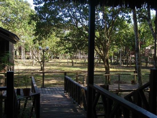 Bilit Rainforest Lodge: View from the room