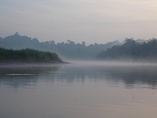 Bilit Rainforest Lodge : The Kinabtangan River for the morning cruise