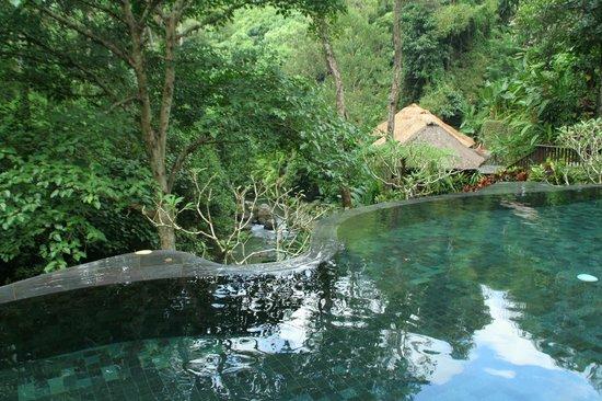 Maya Ubud Resort & Spa: Rustig gelegen in de natuur