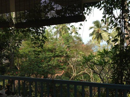 Villa Jacaranda : view out to sea
