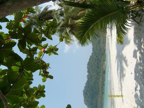 Ko Kut Ao Phrao Beach Resort: уу