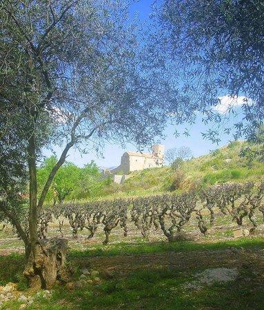 Le Fitoun: Village