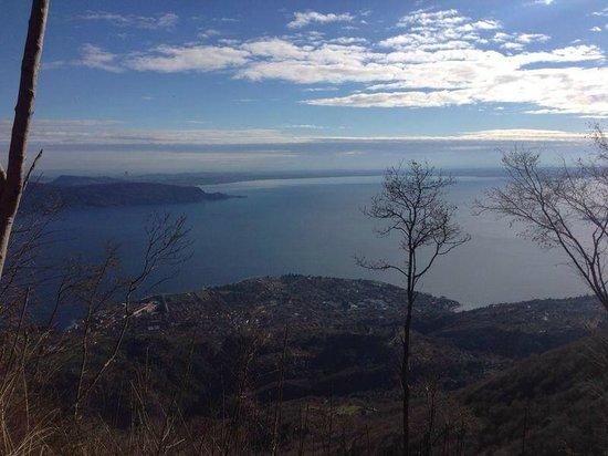 Agriturismo Scuderia Castello: Blick auf den Gardasee von einem Standpunkt über dem Gästehaus