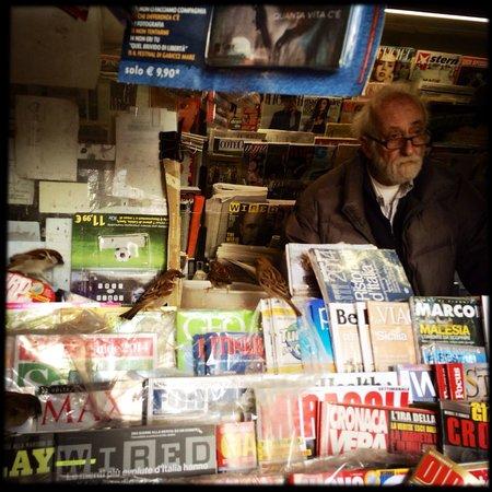 Milano Centrale : Vogelfreundlicher Kiosk an der Piazza Duca D'Aosta