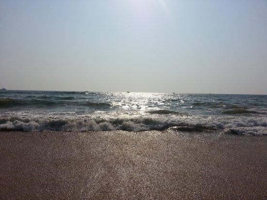Candolim Beach: candolim