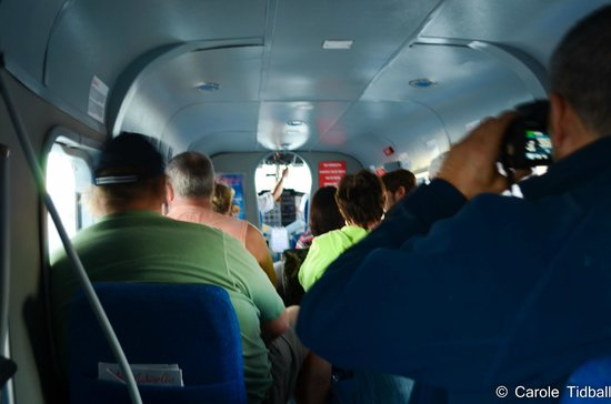 Pachira Lodge: The interior of our plane viewed from the back seat