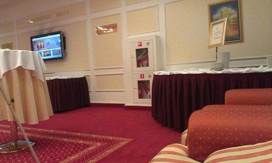 Borodino Hotel : Вход в рабочую зону(холл)