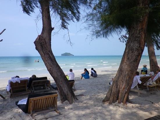 the beach view at Tamu