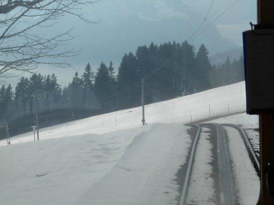 Standing with the train driver descending Mount Rigi