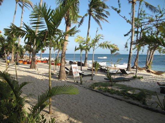 Ocean Vida Beach & Dive Resort : in front of the room