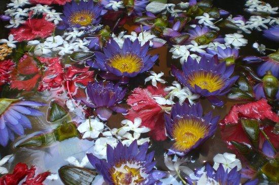 SeethaRama Ayurveda Resort : Das Blütenbad