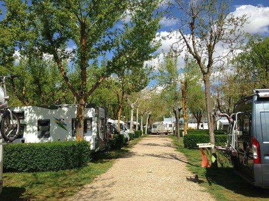 Camping Don Quijote: Parcelas caravanas tiendas de campaña y camper