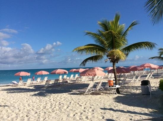 Ocean Club Resort: Beach