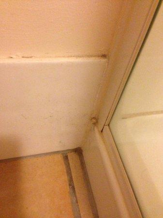 Breakfree Alexandra Beach Premier Resort : Dirty bathroom corners