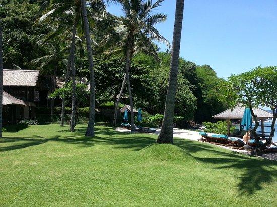 Jeeva Klui Resort: Территория отеля