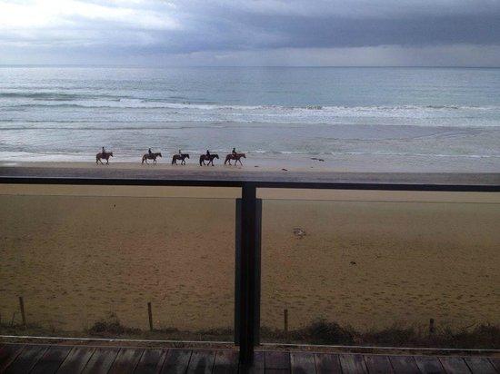Blazing Saddles: On the beach!