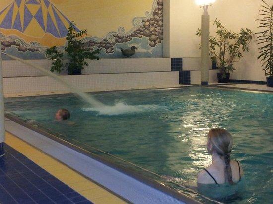 Parkhotel Schoenegg: zwembad
