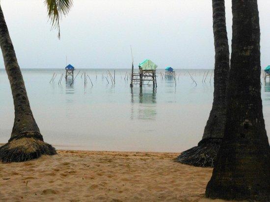 Peppercorn Beach Resort: beach