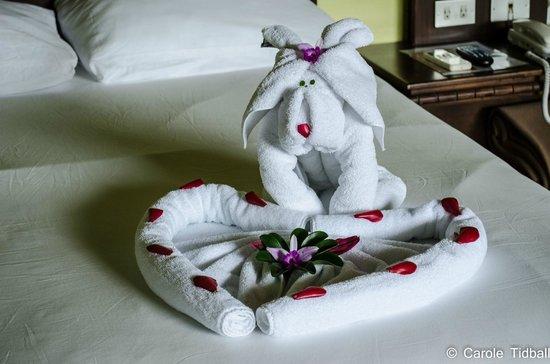 Volcano Lodge & Springs: Amazing towel art!
