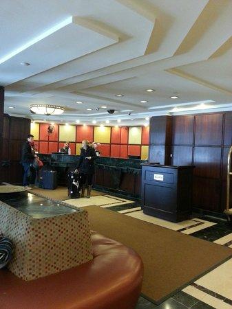 Skyline Hotel : Lobby.