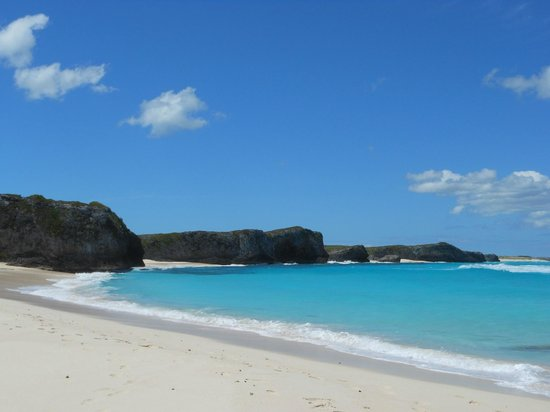Blue Horizon Resort: Empty beach and miles of trails