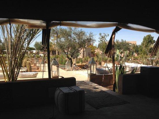 Rose Sultan: tente berbère au fond du jardin