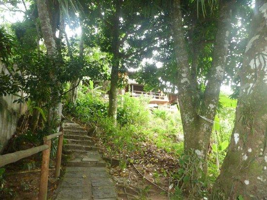 Pousada Tagomago Beach Lodge: Subida hacia la posada