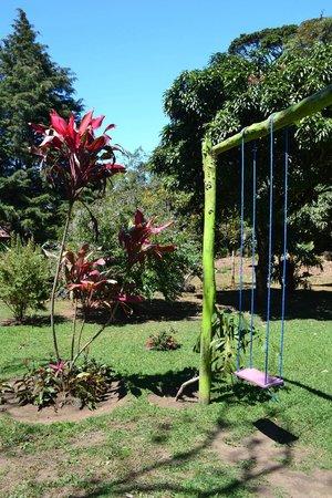 Casa Batsu: Gardens