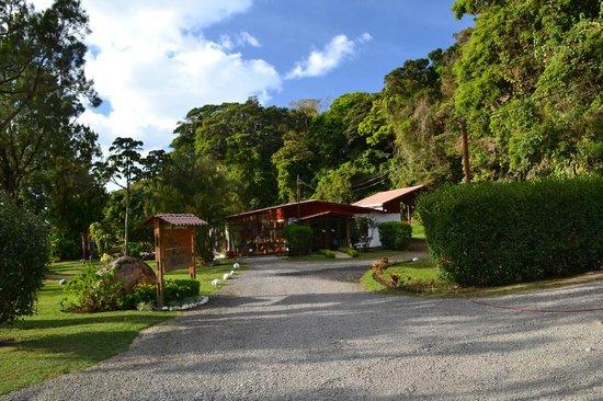 Casa Batsu: Approach