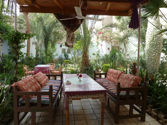 Amon Hotel Luxor: Lovely courtyard garden for relaxing in with a cool drink or delicious dinner