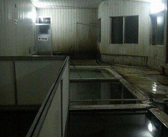 Horoka Onsen : 内湯です。男性用の脱衣所からの画像