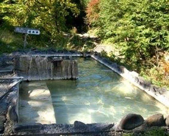 Horoka Onsen : 混浴の露天風呂。秋の紅葉が綺麗です。