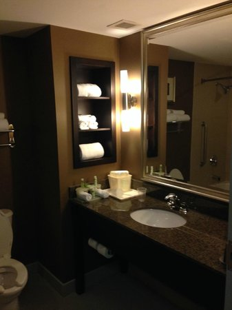 Holiday Inn Express Hotel & Suites Kingston: The bathroom