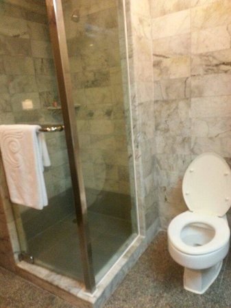 Chaophya Park Hotel : Separate shower