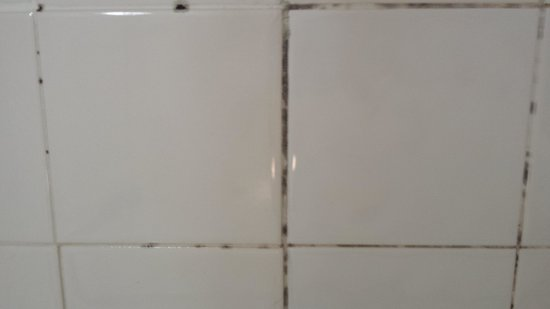 The Rams Lodge: tiles in the bathroom