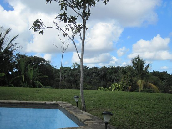El Hotelito at the Rainforest Experience Farm : garden