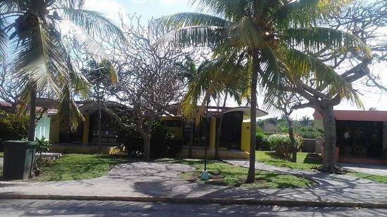 Piastrelle rotte picture of villa bacuranao havana tripadvisor
