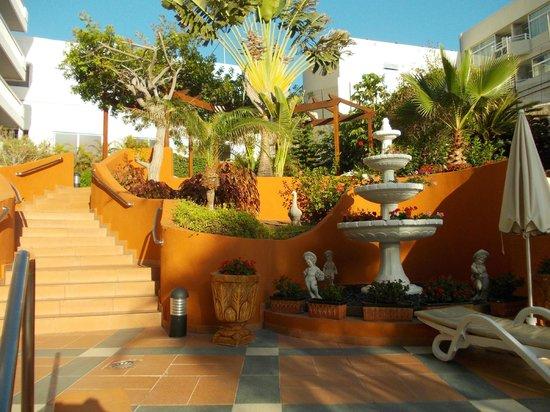 Palm Beach Tenerife: Otoczenie hotelowego basenu