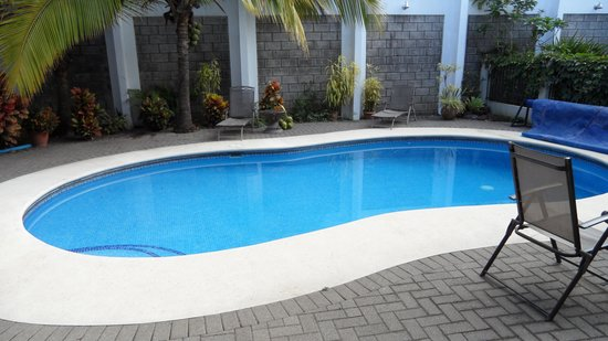 Casa Laurin B&B: The beautiful backyard pool