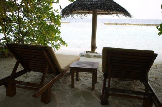 Baros Maldives: Deluxe Villa mit übiger Vegetation