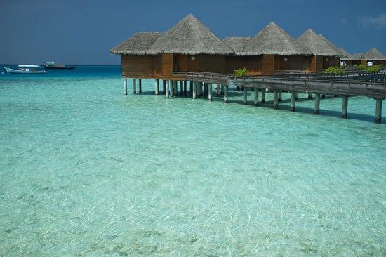 Baros Maldives: Wasserbungalows