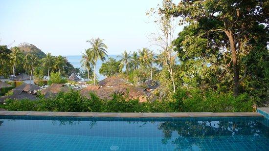Elixir Resort: Vue depuis la piscine privative (bungalow en hauteur)