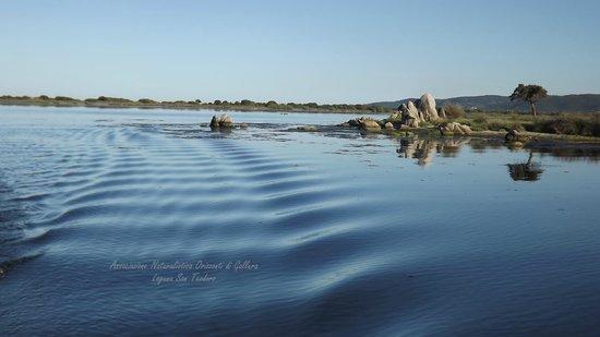 Orizzonti di Gallura: vista interna della laguna ( scia dal battello Lianti)