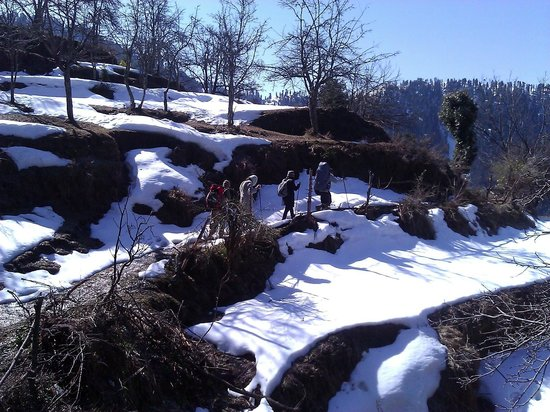 Himalayan Orchard Huts: Trek in snow