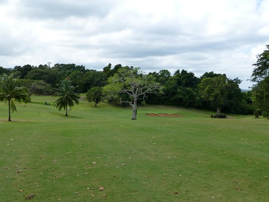 Sandals Golf & Country Club: Nice layout