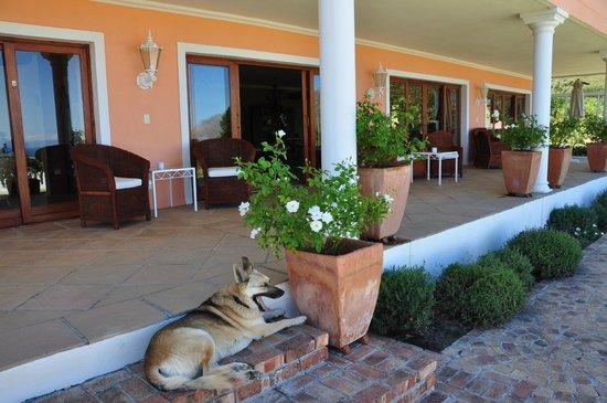 Apricot Gardens Boutique Guesthouse: Sundowner Terrasse